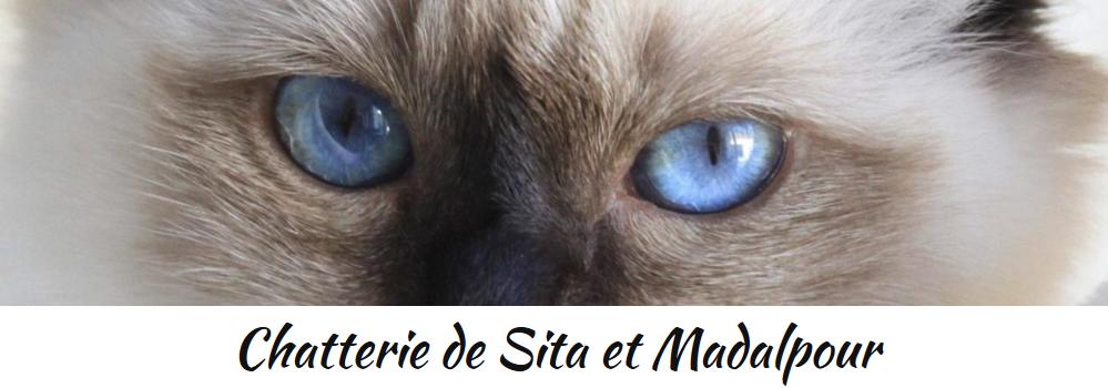 Chatterie de Sita et Madalpour